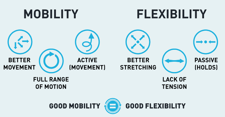 Mobility Vs Flexibility Infographic